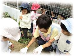 社会福祉法人名北福祉会 西部医療センター くさのみ保育所(ID:me0387060921-3)