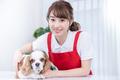 【さとう動物病院(ID:sa1038032221-5)】のバイトメイン写真